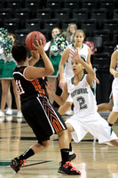 2013 VHSL Division 1 Girls Semifinal Alta Vista vs Clintwood