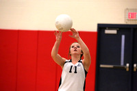 Dinwiddie vs Thomas Dale Girls Volleyball 10-15-2015