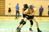 Henrico Invitational Wrestling Match 1-25-2014